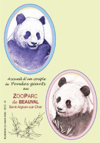 Les pandas du zoo de Beauval en carte postale dans Cartophilie CP-pandas
